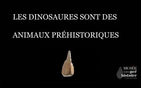 Idée reçue : Les dinosaures sont des animaux préhistoriques