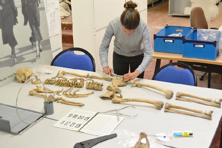 Jeu des 7 erreurs observation d'un squelette - après