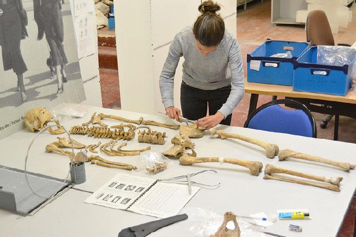 Jeu des 7 erreurs observation d'un squelette