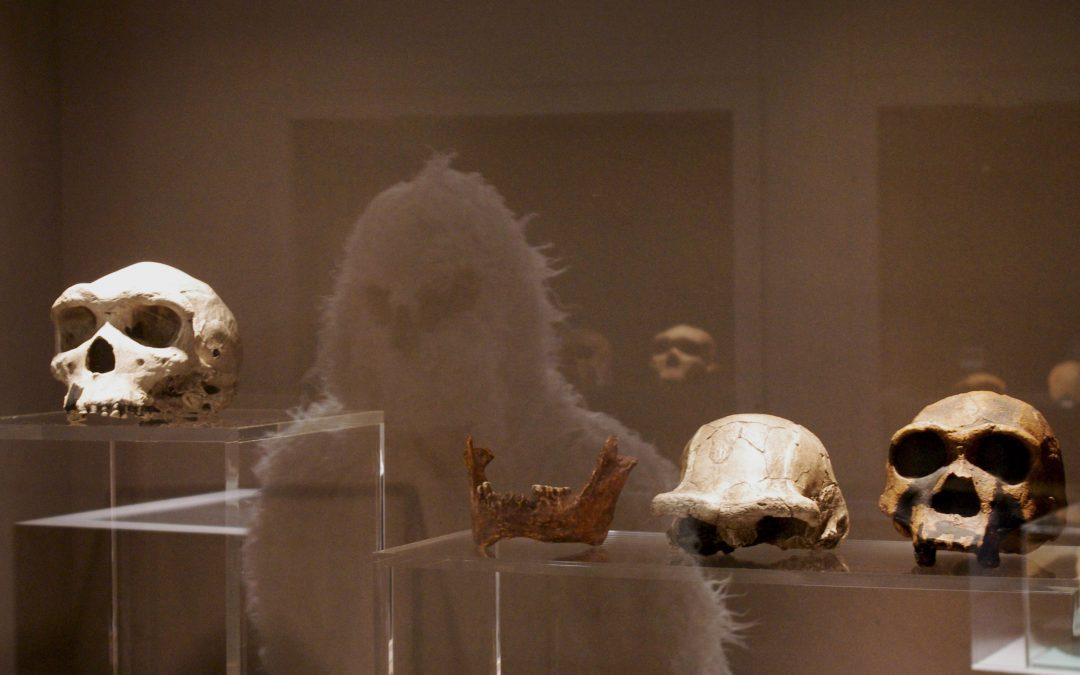 Le Yéti découvre la Préhistoire au musée de Terra Amata