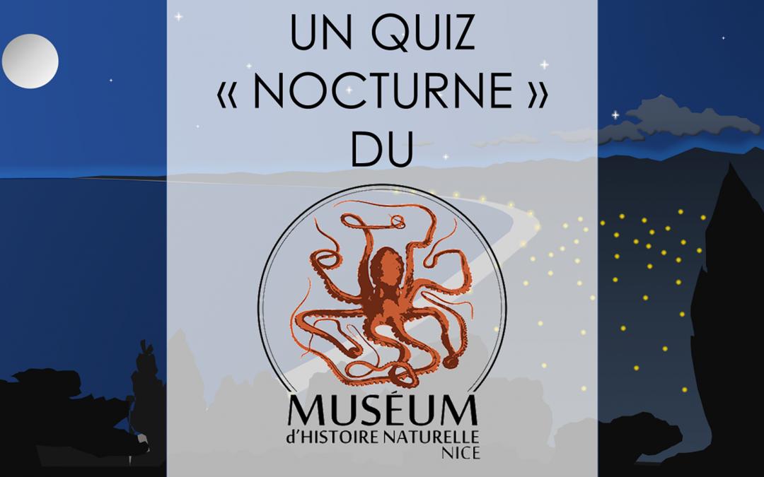 Quiz – Les animaux nocturnes de Nice