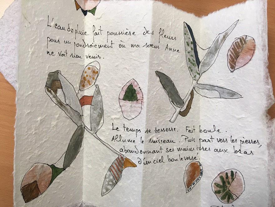 La nature prend racine dans le livre d'artiste