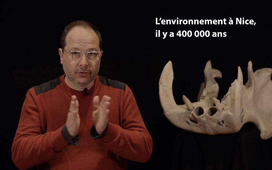 Environnement, il y a 400 000 ans à Terra Amata