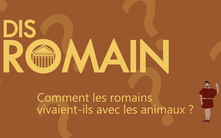 Dis Romain, comment les romains vivaient-ils avec les animaux ?